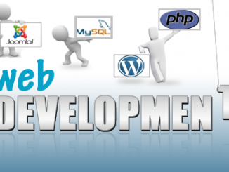 17-Web Development Company